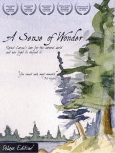 Poster for A Sense of Wonder