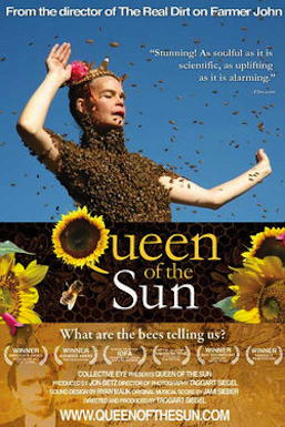 Poster for Queen of the Sun: What Are the Bees Telling Us?